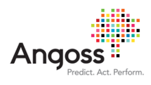 Angoss Software